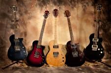 Hemp guitars