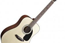Fender C 60