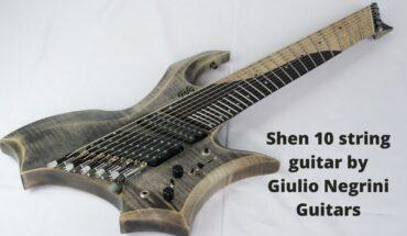 Shen 10 string guitar